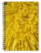 Yellow Strings Spiral Notebook