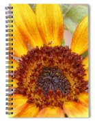 Yellow Sunflower Spiral Notebook