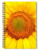 Yellow Sunflower With Bee Spiral Notebook