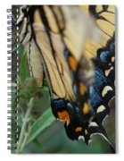 Yellow Swallow Spiral Notebook