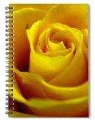 Yellow Tea Spiral Notebook