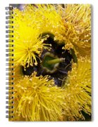 Yellow Tree Flower Spiral Notebook
