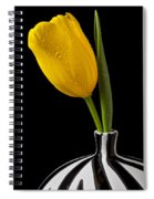 Yellow Tulip In Striped Vase Spiral Notebook