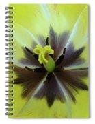 Yellow Tulip Macro Spring Floral Garden Baslee Troutman Spiral Notebook