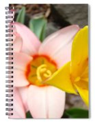 Yellow Tulips Art Prints Pink Tulips Spring Florals Baslee Troutman Spiral Notebook