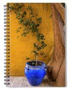 Yellow Wall, Blue Pot Spiral Notebook