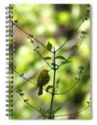 Yellow Warbler In A Tree 2 Spiral Notebook
