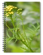Yellow Wildflower Spiral Notebook