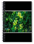 Yellow Wild Flowers In Late Summer Spiral Notebook