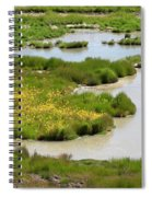 Yellow Wildflowers At Mud Volcano Area In Yellowstone National Park Spiral Notebook