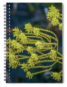 Yellow Wildflowers Spiral Notebook