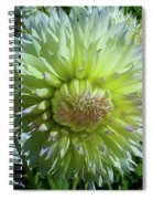 Yellow With White Dahlia Flower Spiral Notebook