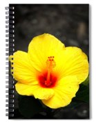 Yellow Wonder Spiral Notebook