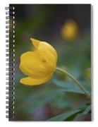 Yellow Wood Anemone 5 Spiral Notebook