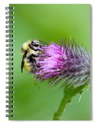 Yellowhead Bumblebee Spiral Notebook