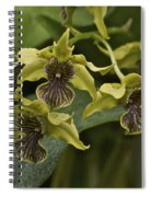 Yellowish Orchids Spiral Notebook
