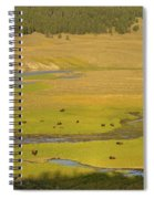 Yellowstone Bison 2 Spiral Notebook