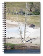Yellowstone Park Bisons In August Spiral Notebook