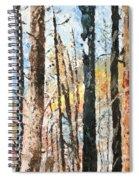 Yellowstone Park Spiral Notebook