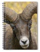 Yellowstone Ram Spiral Notebook
