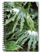 Yes Snow In Florida Spiral Notebook