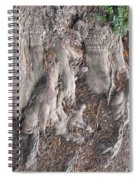 Yew Tree Roots Spiral Notebook