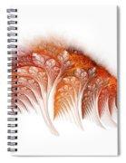 Ygglaand Balsam  Spiral Notebook