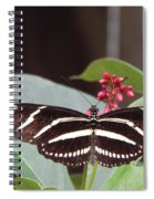Yikes Stripes Spiral Notebook