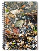 York Beach Shore Spiral Notebook