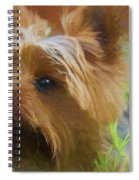Yorkie In The Grass - Painting Spiral Notebook