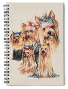 Yorkshire Terrier Spiral Notebook