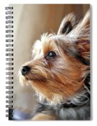 Yorkshire Terrier Dog Pose #5 Spiral Notebook