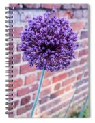 Yorktown Onion Bloom Spiral Notebook