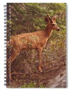 Yosemite #2, Detail Spiral Notebook