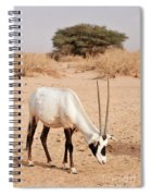 Yotvata Hai-bar Reserve Spiral Notebook
