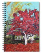 You Are My Heart Spiral Notebook