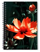 You Are So Beautiful ... Spiral Notebook