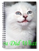 You Did What Greeting Card Spiral Notebook