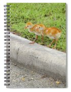 You First. No You Go First Spiral Notebook