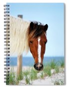 You Looking At Me? Spiral Notebook
