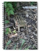 You There - Ground Squirrel Spiral Notebook