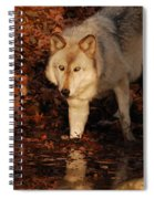 You Want A Piece Of Me Spiral Notebook