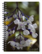 You Were Born With Wings  Spiral Notebook