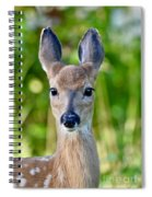Young And Pretty Spiral Notebook