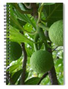 Young Breadfruit Spiral Notebook