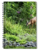 Young Doe Among The Flora, No. 2 Spiral Notebook