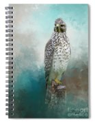 Young Eyes Spiral Notebook