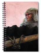 Young Female Asian Monkey Sitting On The Roof Spiral Notebook