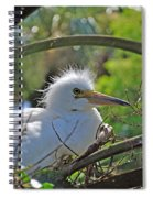 Young Great Egret Spiral Notebook