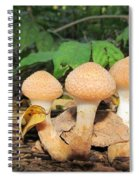 Young Honey Mushrooms Spiral Notebook